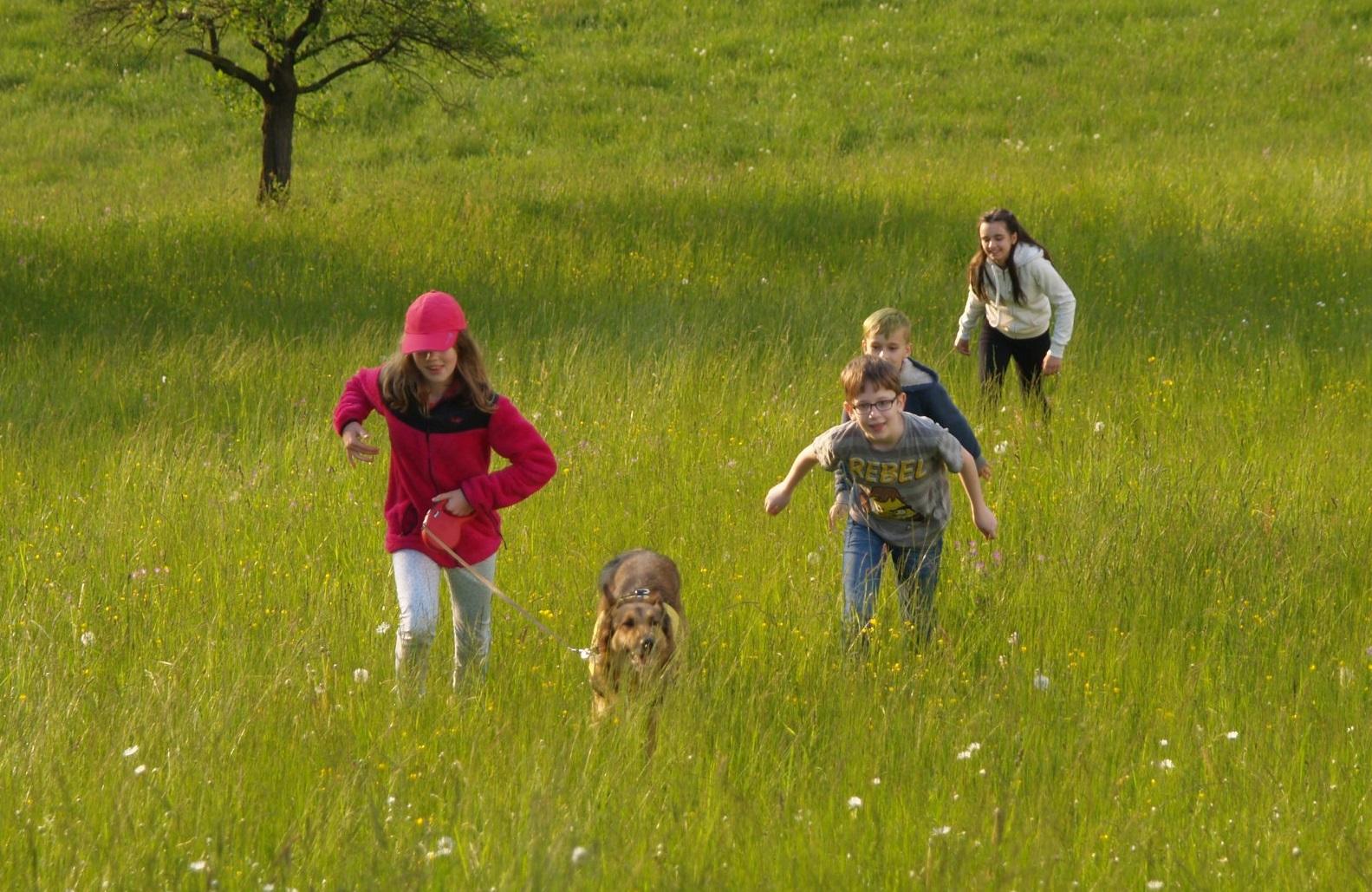 Být sám jiný je těžké aneb Inkluze zpohledu potřeb dětí, které jsou vběžném kolektivu jiné
